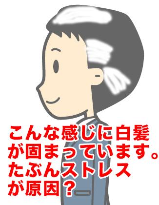白髪イメージ