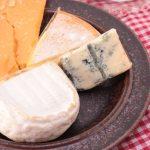 豆乳クリームでチーズを作ろう!美味しい作り方まとめ